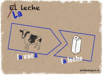 """el leche""; common errors; frequent mistakes; Spanish learners; español lengua extranjera; ELE; errores frecuentes"