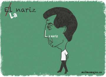 """el nariz""; common errors; frequent mistakes; Spanish learners; español lengua extranjera; ELE; errores frecuentes"